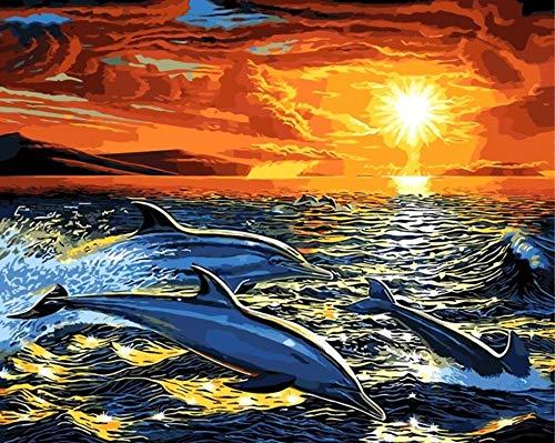 GCQBLM Fisch im Meer Delphin Ölgemälde Zeichnung nach Zahlen abstrakte Dekoration Malvorlagen Malen nach Zahlen Dekor Geschenk 16 x 20 Zoll Rahmenlos