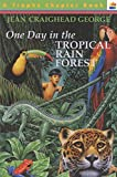 Best Harper Collins Children Chapter Books - One Day in the Tropical Rain Forest Review