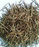 RIESENBAMBUS Samen - ca. 60 (!) Stück - Moso Bambus - Winterhart wächst 8 bis 10 Meter in Rekordgeschwindigkeit - gut als Sichtschutz oder Windschutz im Garten geeignet -