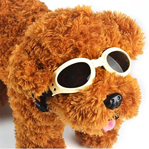GFEU – Hunde-Sonnenbrille, schicke Brille mit UV-Schutz, wind- und wasserdichter Sonnenschutz, für Hunde und Hundewelpen