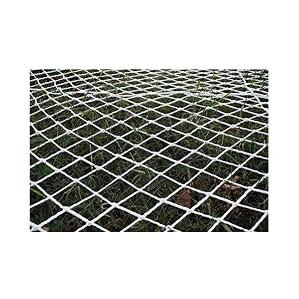 Protective net, anti-fall safety net cat net balcony safety net children's fence net safety net decoration net kindergarten playground park stadium multi-purpose (Size : 10 * 10M(33 * 33ft))  ◆ Safety net wire diameter 6MM, mesh spacing 10CM.Color: white rope net.Our protective mesh can be customized according to your needs. ◆Protective net material: Made of nylon braided rope, hand-woven, tightened.Exquisite workmanship, solid and stable, can withstand 300kg weight impact. ◆Features of decorative net: soft material, light mesh, multi-layer warp and weft, fine wiring, fine workmanship; clear lines, non-slip durable, anti-wear. 1