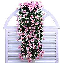 suchergebnis auf f r h ngepflanzen balkon. Black Bedroom Furniture Sets. Home Design Ideas