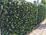 eXtreme® Instant Hedging Artificial Screening Fencing Realistic 2M x 1M - Can Be Extended!