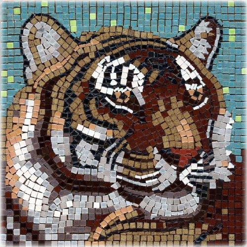Kit mosaico, 20x20cm, Tigre