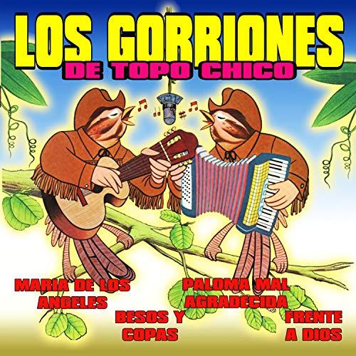 Frente a Dios de Los Gorriones Del Topo Chico en Amazon ...