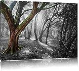 einsamer Baum in tristem Grau schwarz/weiß Format: 80x60 auf Leinwand, XXL riesige Bilder fertig gerahmt mit Keilrahmen, Kunstdruck auf Wandbild mit Rahmen, günstiger als Gemälde oder Ölbild, kein Poster oder Plakat