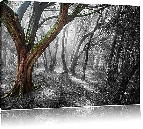 einsamer Baum in tristem Grau schwarz/weiß Format: 100x70 auf Leinwand, XXL riesige Bilder fertig gerahmt mit Keilrahmen, Kunstdruck auf Wandbild mit Rahmen, günstiger als Gemälde oder Ölbild, kein Poster oder Plakat