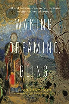 Waking, Dreaming, Being: Self and Consciousness in Neuroscience, Meditation, and Philosophy by [Thompson, Evan]
