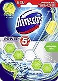 Domestos WC-Stein Power 5 Grüner Tee & Zitrus 55 ml, 5er Pack (5 x 55 ml)