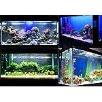 Kasstino 24 LED/48LED Highlighting Aquarium Light Fish Turtle Tank Light Clip Light Lamp (48LEDs) 14