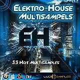 Electro House Multi Samples - Samples SF2 e SXT per Electro - Scarica 33 fantastici multi-campioni per le produzioni elettroniche e house! Questi bassi, cavi e pastiglie... [SXT Patches] [DVD non-BOX]
