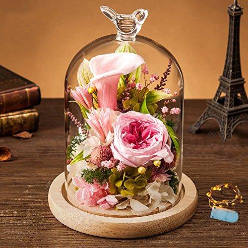 Small night light gift box,Ewige blume geschenk-box Glas Valentinstag Kreative ornamente Weihnachten Rose] Frische blumen-Rosa 14x20cm(6x8inch) Rosa Rose Night Light