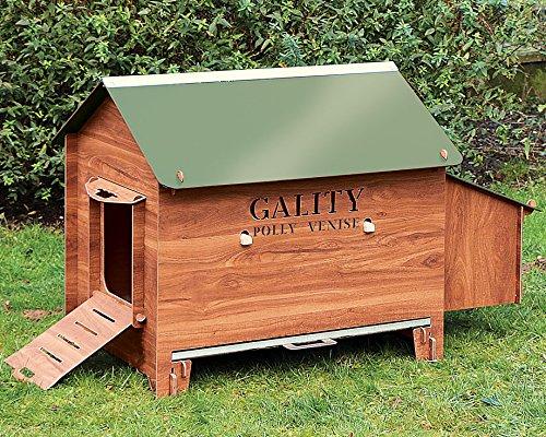 poule beaumont achat vente de poule pas cher. Black Bedroom Furniture Sets. Home Design Ideas