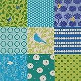 echino Fabrics Blaues und grünes Wachstuch mit Quadraten