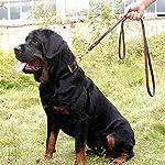 Dog Leash with 2 Handles, 1.9M Long Heavy Duty Handmade Leather Pet Dog Training Lead Leash for Running, Walking, Hiking… 14