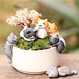 P S Retail Micro Landscape Cartoon Lazy Kitten (Multicolour) - Pack of 6