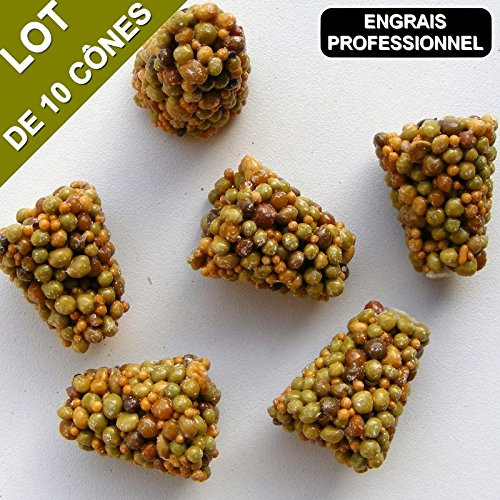 engrais-special-kit-10-arbustes-pour-haie-10-cones