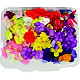 Fiori Commestibili BIOLOGICI - 120 FIORI EDULI di COLORI e VARIETÀ MISTE in vaschetta alimentare di 23 cm x 15 cm x 1,5…