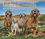 Golden Retriever – For the Love of 2018-18-Monatskalender mit freier DogDays-App: Original BrownTrout-Kalender - Deluxe [Mehrsprachig] [Kalender] (Deluxe-Kalender)