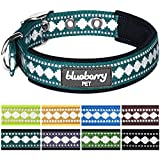 Blueberry Pet Soft & Comfy 3M Reflective Jacquard Padded Dog Collar in Teal Blue, Neck 43cm-52cm, Large, Collars for Dogs, Matching Lead Available