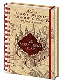 Harry Potter Carnet Bloc-Notes - La Carte du Maraudeur (21 x 15 cm)