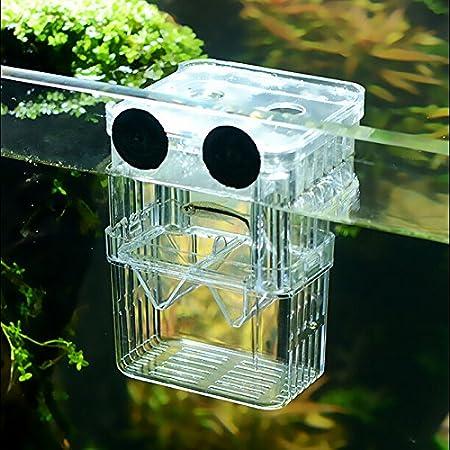 SENZEAL Kunststoff Fisch Isolation Box multifunktionale Zuchttanks Brutkasten Inkubator Box mit 3 Stücke Pasteur Pipette…