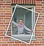 Fliegengitter Insektenschutz Fenster 130 x 150 Farbe weiß Fliegengitter Gaze