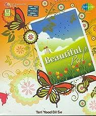 Beautiful Pal Teri Yaad Dil Se