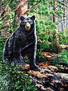 Natur-fell-shop plaid motif ours en peluche 160 x 200 cm