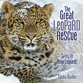 The Great Leopard Rescue: Saving the Amur Leopards (Sandra Markle's Science Discoveries)