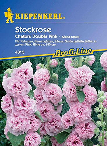 Stockrose Double Red'