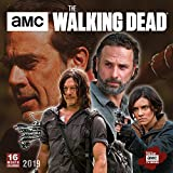 The Walking Dead AMC 2019 Square Wall Calendar