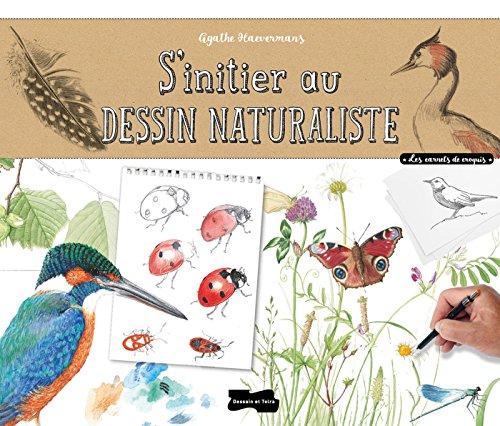 S'initier au dessin naturaliste par Agathe Haevermans