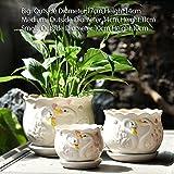 Nclon Dekorative Design Keramikplatten Pflanze Blume Pflanzer Töpfe,Perfekt Für Fenster Fensterbänke,Arbeitsplatten,Schreib Und Kleine Tabellen