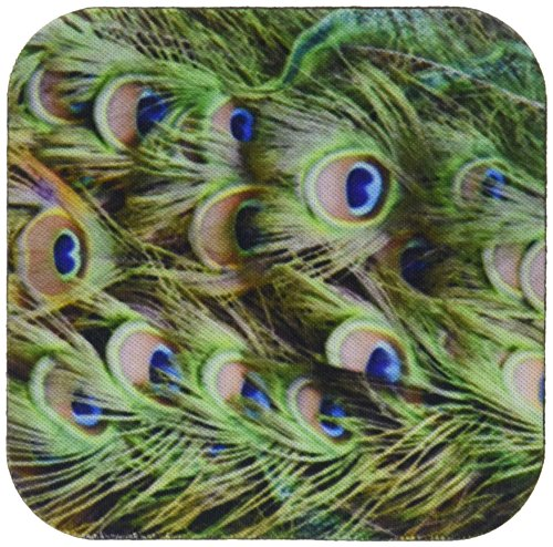 susans-zoo-crew-animals-bird-peacock-tail-feathers-eyes-coasters-set-of-4-coasters-soft