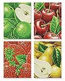 Tutti Frutti – heimische Früchte Malen nach Zahlen Schipper Quattro je 18 x 24 cm