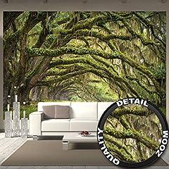 Idea Regalo - Fotomurale Natura Quadro Decorazione Bosco Paesaggio Estate Foresta Muschio Mistico Oak Quercia Viale Quercus Bosco delle fiabe Parco Rami I Fotomurales by GREAT ART (336 x 238 cm)