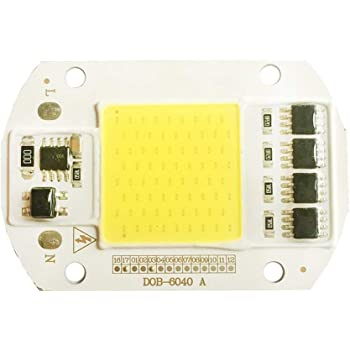 Tesfish LED Motor de luz 50 W 220 V COB chip inteligente IC controlador integrado para foco de entrada (color blanco)