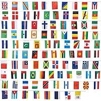 Lot de 100drapeaux du monde - Décorations de fête, couleurs assorties - 13,2x23,4cm - 24,4m de long
