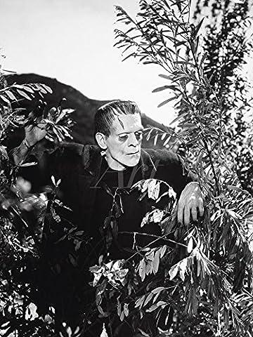 Artland Poster oder Leinwand-Bild fertig aufgespannt auf Keilrahmen mit Motiv Filmszene Frankenstein 1931 Film & TV Film Fotografie Schwarz/Weiß
