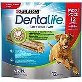 Dentalife Multipack Cane Snack per l'Igiene Orale, Taglia Large - 426 g