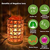 Himalayan Salt Lamp Natural Crystal Salt Lamp Night Light with Wood Base Bulb and Dimmer Control for Home Decorations and Gift by COOWOO