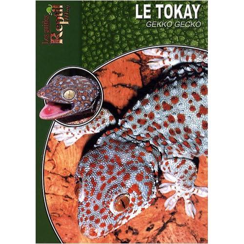 Le Tokay: Gekko Gecko