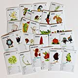 Alles vegan - das Quartett-Kartenspiel für Veganer und Vegetarier.