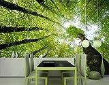 Papiertapete - Fototapete Wald No.99 'FOREST DREAMS' 400x280cm Wald Himmel , Größe:280cm x 400cm
