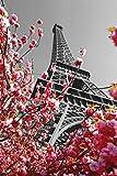 Close Up Paris Poster Eiffelturm (61cm x 91,5cm) + Ü-Poster