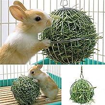 Huhuswwbin - Juguetes para Masticar con Forma de Conejo Hueco, Acero Inoxidable, dispensador de