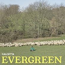 """Evergreen - [Vinile 12"""" Verde Trasparente]"""
