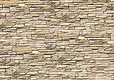 Fototapete Asia Stone Natur Naturstein Asien Steinmauer XXL 400 x 280 cm - 8 Teile Vlies Tapete Wandtapete - Moderne Vliestapete - Wandbilder - Design Wanddeko - Wand Dekoration wandmotiv24