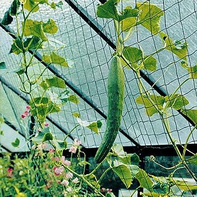 Beckmann KG RAN Ranknetz von Ing. G. Beckmann KG auf Du und dein Garten